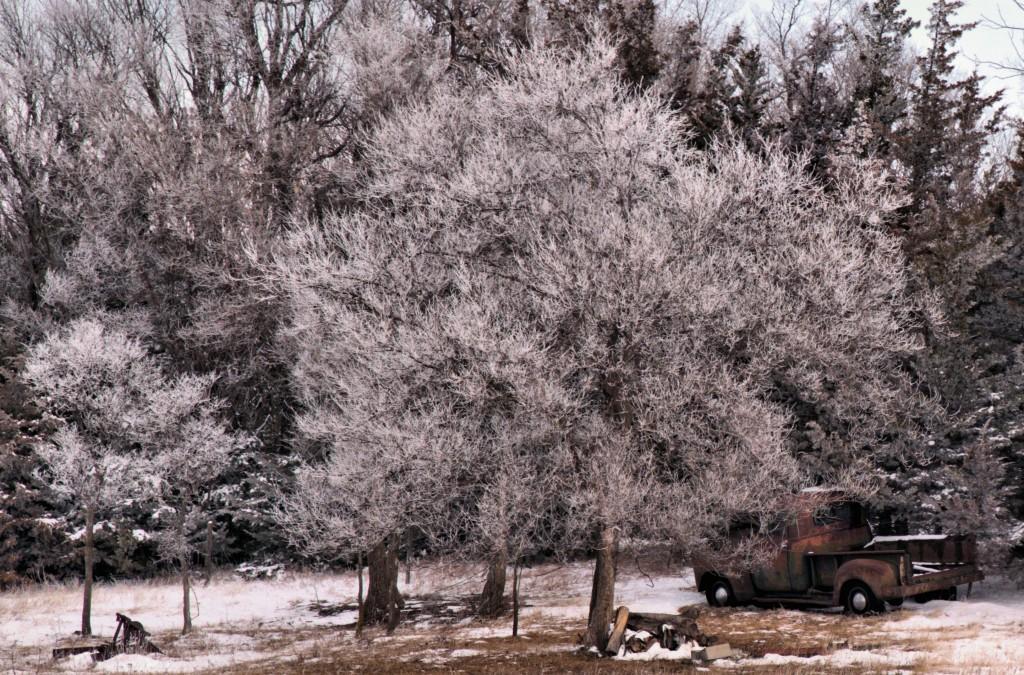 Rusting in a Winter Wonderland